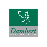 Damhert